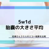 【5w1d】胎嚢の平均サイズは7.75mm【妊婦30人比較結果】