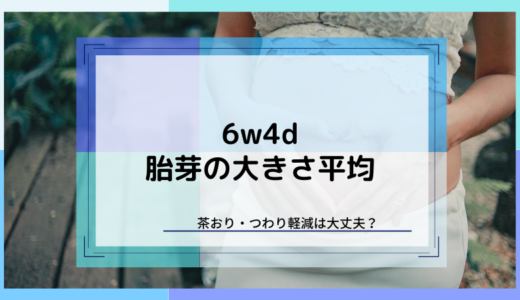【6w4d】胎芽の大きさは平均5mm&茶おり・つわり軽減は大丈夫?