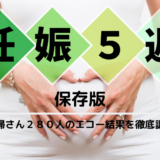【保存版】妊娠5週になったら読む記事。280人のエコー結果を徹底比較