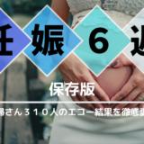 【保存版】妊娠6週になったら読む記事。310人の妊娠レポを徹底比較