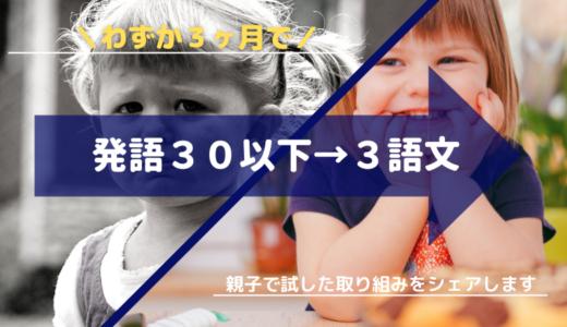2歳なのに言葉が遅い?3ヶ月で発語30以下→3語文まで成長させた方法
